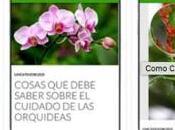 mejores aplicaciones para amantes plantas