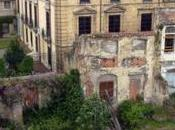 Oviedo muerto
