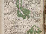 Acerca extraño manuscrito existencia elfos Klingon...