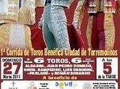Corrida Toros Benéfica 'Ciudad Torremolinos'