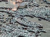 Fotos Ineditas terremoto Tsunami Japon
