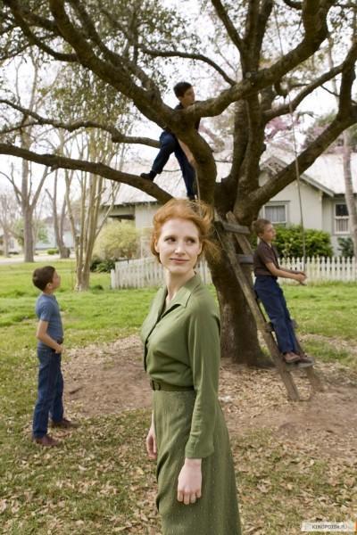 Nuevas imágenes de The tree of life inundan la red