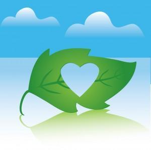 Un día enamorado y ecológico
