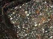 Investigadores encuentran meteorito podría luces sobre vida en...