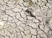 está secando planeta?