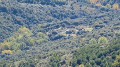 Leyenda negra de la reforestación