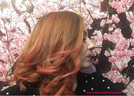 CABELLO: ICON PLAYFUL BRIGHTS VS STAINED GLASS