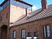baño realidad: Visita campos concentración Auschwitz (II)