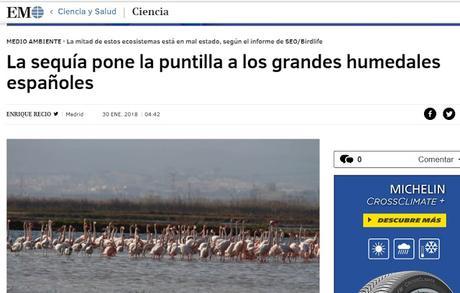 LA PERSISTENTE SEQUÍA PONE EN PELIGRO A UN GRAN NÚMERO DE HUMEDALES ESPAÑOLES