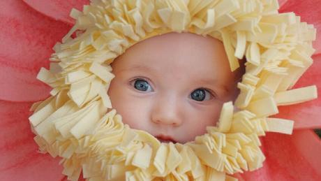 Disfraz de flor para beb casero y fcil de hacer sin coser