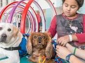 Intervenciones asistidas perros pediatría