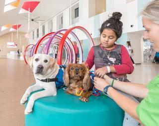 Intervenciones asistidas con perros en pediatría