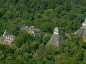 Halladas miles estructuras #mayas ocultas bajo selva #Guatemala