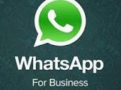 Whatsapp Business: funciona nueva busca revolucionar contacto entre empresas clientes