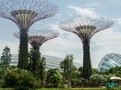 Cosas Singapur Sorprenderán