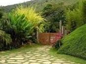 Diseño jardines rústicos