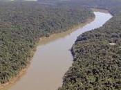 Presencia agroquímicos metales pesados cuenca principales ríos país