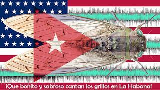 Ataques sónicos: justificación para socavar relaciones Cuba-EE.UU.