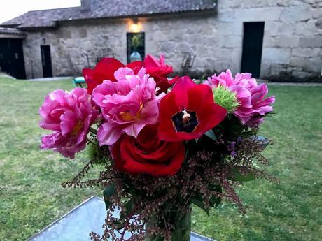 ¡Las flores del jardín en febrero! The flowers of the garden in February!