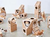 Estos arquitectos crean casas cartón modulares para gatos molan mucho!
