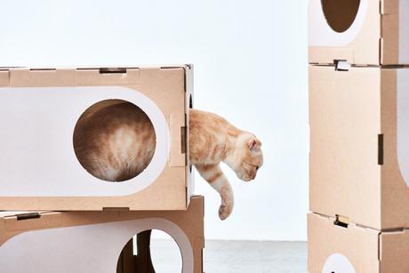 Estos arquitectos crean casas de cartón modulares para gatos ¡y molan mucho!