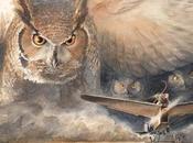 LINDBERGH: increíble aventura ratón volador
