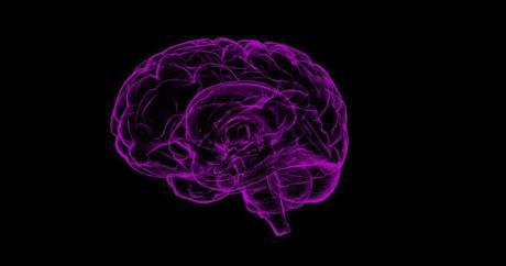 Envejecimiento cerebral inicia antes de lo esperado