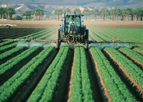 Se abre el debate: ¿afectan los pesticidas el embarazo?