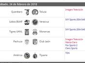 Resumen estadísticas jornada futbol mexicano