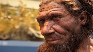 ¿Qué pasa con lo de los neandertales?
