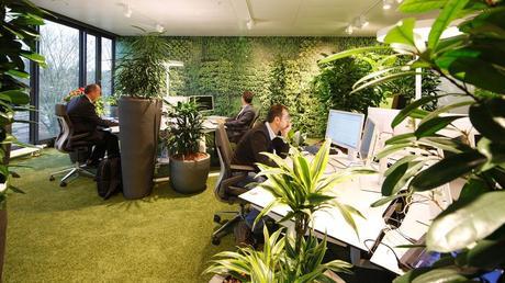 10 ideas ecológicas para implementar en tu lugar de trabajo