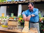 BBVA lanza proyecto apícola beneficia comunidades campesinas Santander