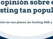 Raiola Networks Opiniones sobre este hosting popular
