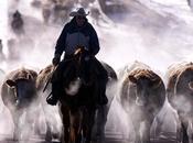 cowboy gauchos