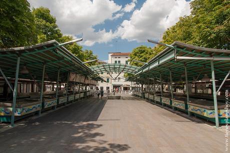 Mercado pescado Treviso