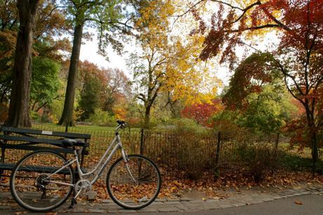 central-park-bici
