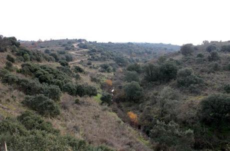 Vista del arroyo de los Cuernos Pozo Airón