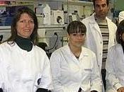 Investigadores Miami suman grupo malagueño estudia desarrollo nueva terapia celular para diabetes