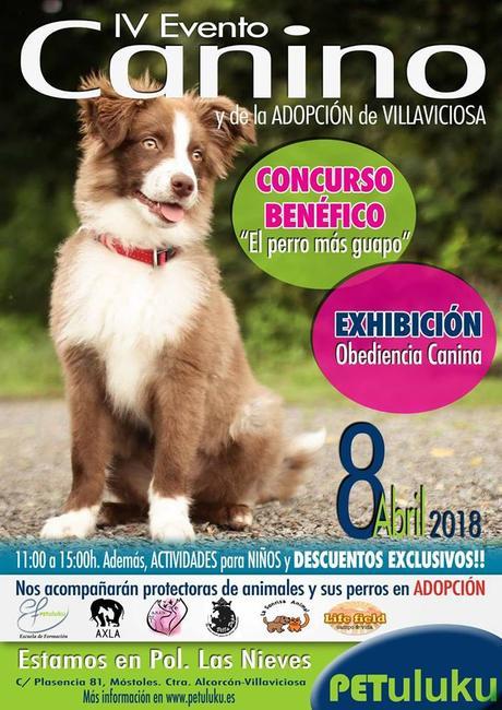 evento adopcion villaviciosa