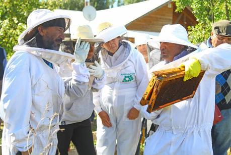 Lanzan programa de promoción y fomento apícola 2018 en la comuna de Colbún