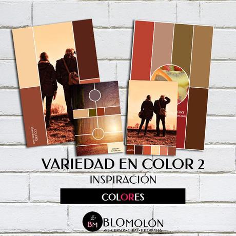 variedad_en_color_paletas_colores_2