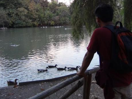 Fotografiando el Parque Ohiggins