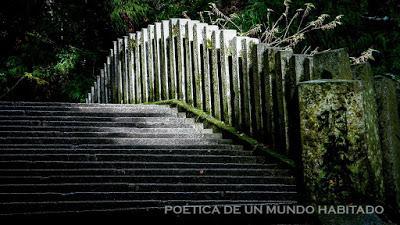 POÉTICA DE UN MUNDO HABITADO