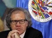 Filtran documentos sobre Luis Almagro dinero público