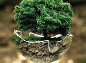 ¿Cómo tener negocio dañar ambiente?