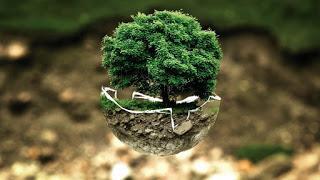 ¿Cómo tener un negocio y no dañar el ambiente?