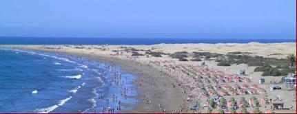 Las Islas Canarias un sitio donde hacer tu mudanza