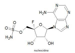 nucleocidina