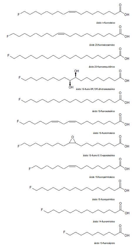 ácidos grasos fluorados