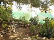 Diseño jardín: hacer tierras sacamos algunas zonas